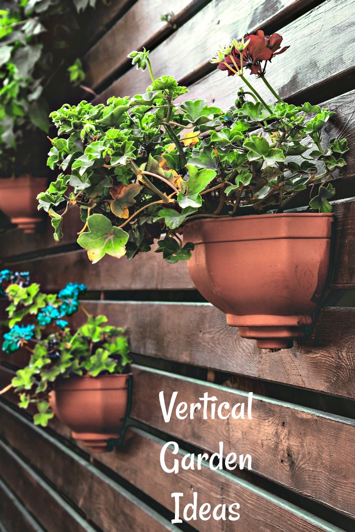 Lots of ideas for vertical gardens