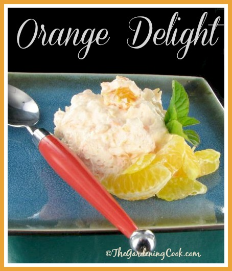 Orange delight salad. Refreshing and light with a hint of sweetness