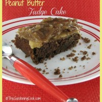 Peanut butter fudge cake with coconut pecan frosting. To die for!