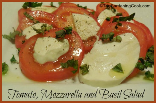 Fresh Tomato salad with mozarella and basil