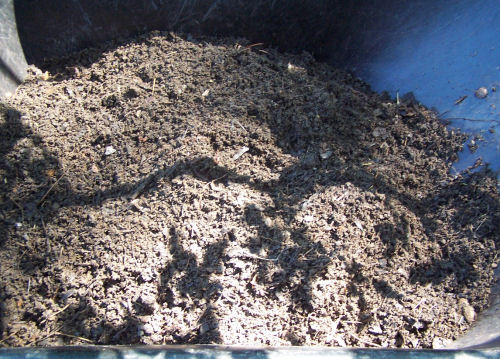 Finished compost.