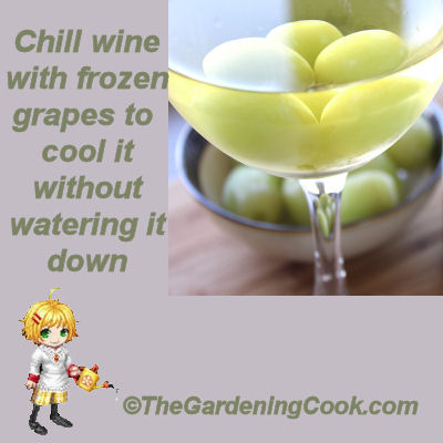 Chill wine with frozen grapes. It will cool the wine without watering it down like ice cubes do.
