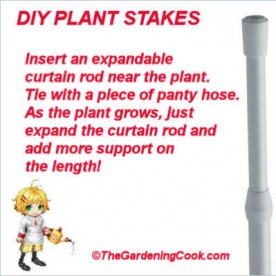 Curtain rods as expandable plant supports.