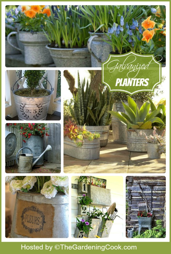 Galvanized planters for a unique cottage garden look.