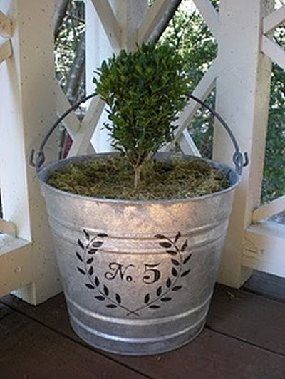 Small shrub planted in a galvanized bucket that has been stenciled with the house number