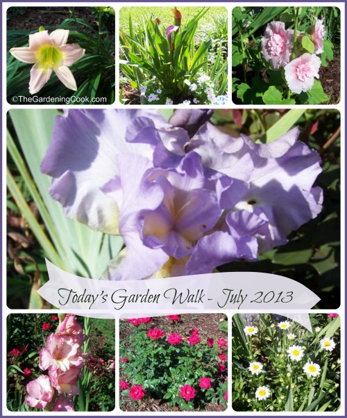 Today's Garden Walk July 2013
