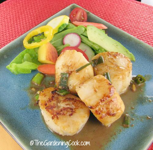 Seared scallops with white wine.