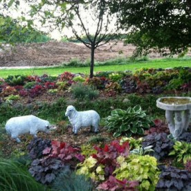 Stott Garden
