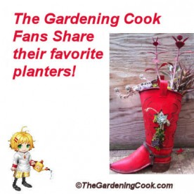 Gardening Cook Fans - favorite planters