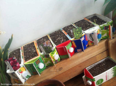 Juice and milk containers recycled into herbs garden