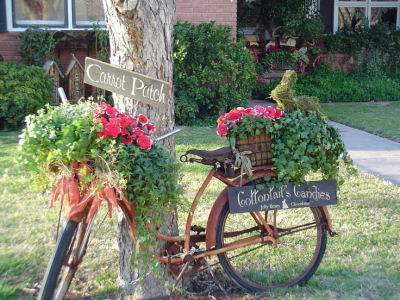 Old Bicycle used as a planter