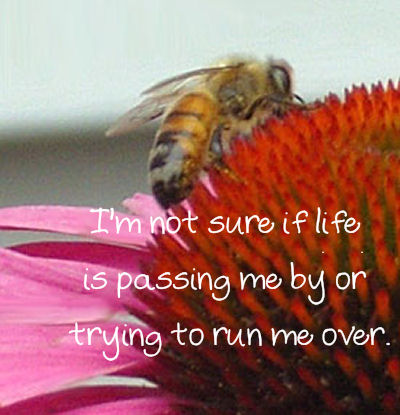 Is life passing you by?