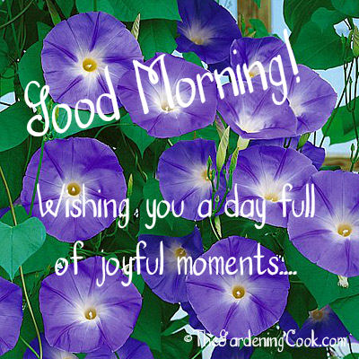 Wishing you a day full of joyful moments.