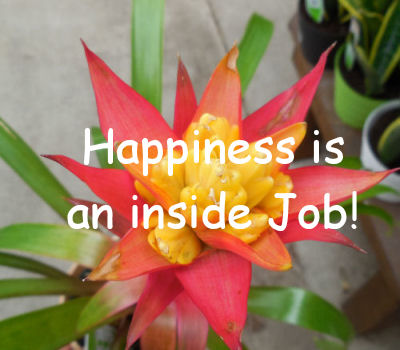 Happines is an inside job quote.