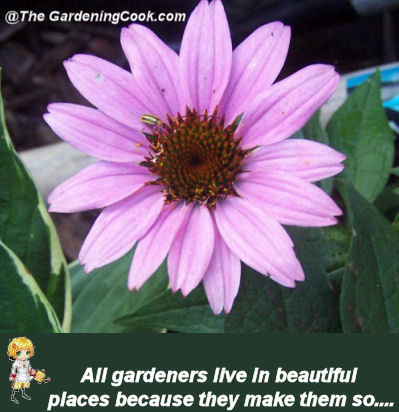 Gardens are beautiful because gardeners make them so.