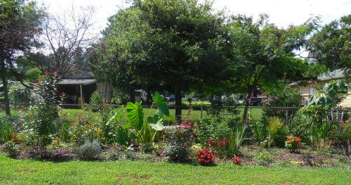 full garden July 2013