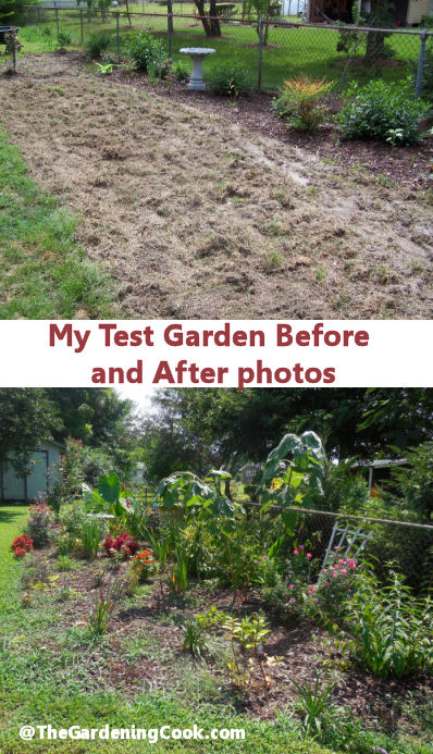 My Test Garden Before and After