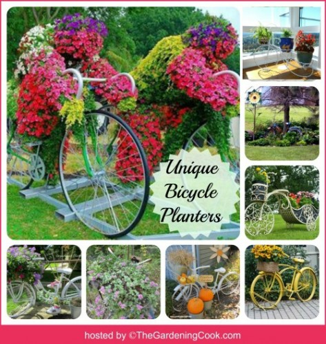 There are lots of creative ways to use bicycles in your garden projects. thegardeningcook.com