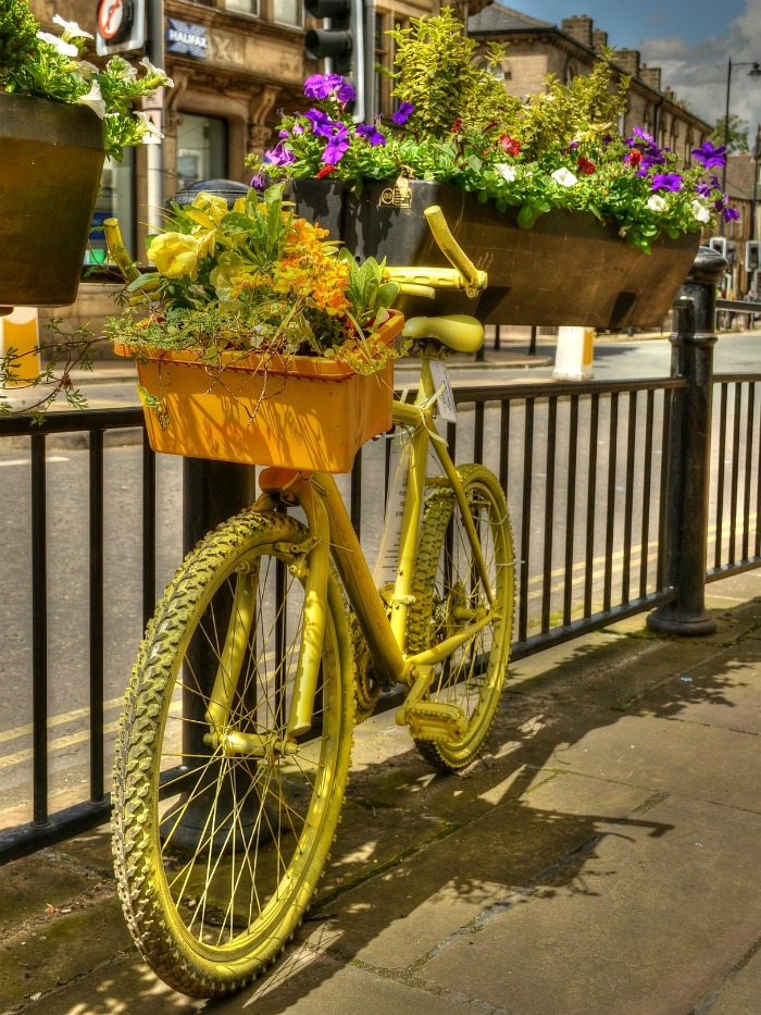 Yellow bicycle planter
