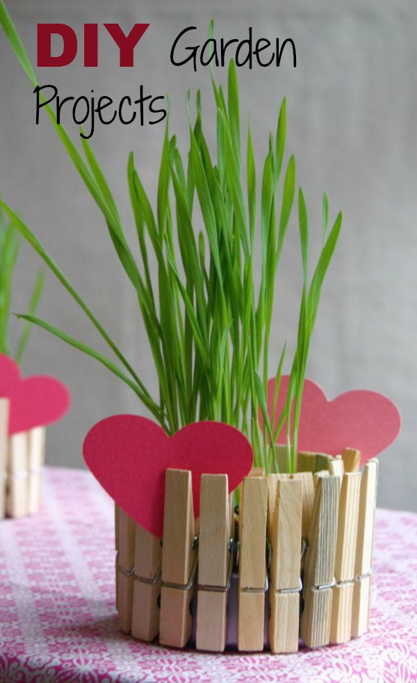 simple clothes pin Pot with fresh chives