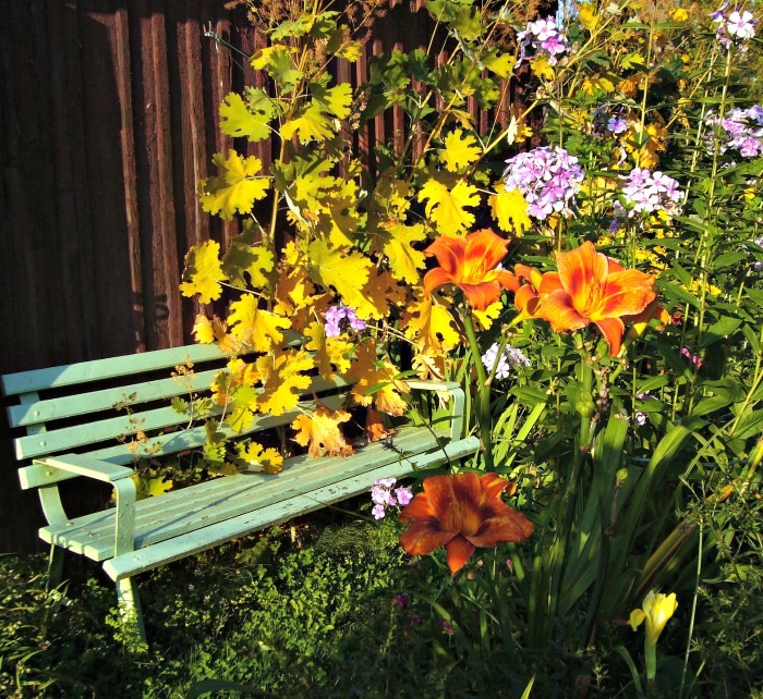 Cottage garden seating area
