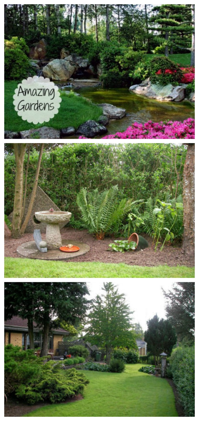 Lovely gardens from around the world. Fans of the gardening cook share their outdoor living spaces.