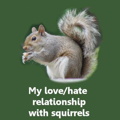 Squirrel Damage In A Vegetable Garden