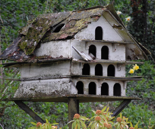 bird house for many birds