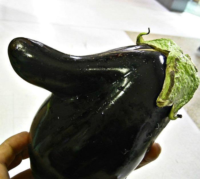 Odd Shaped eggplant