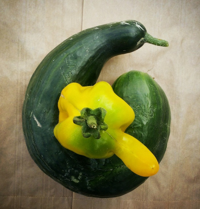 Pepper and Zucchini growing together