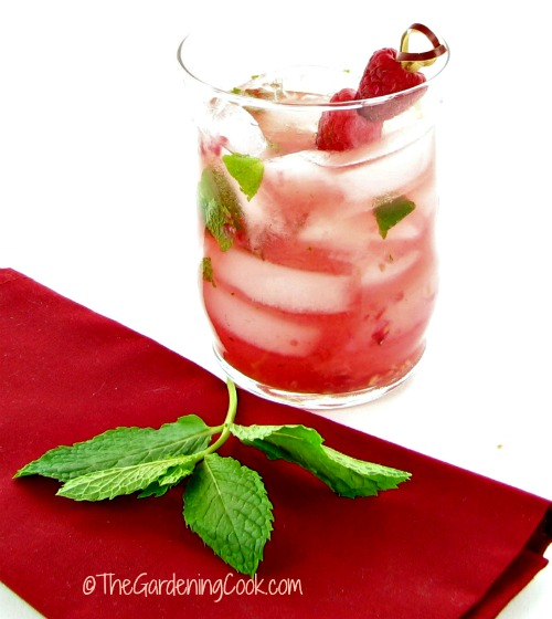 Ritzy Raspberry Cocktail