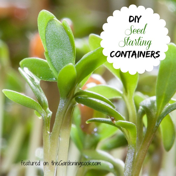 Household items to use for starting seeds