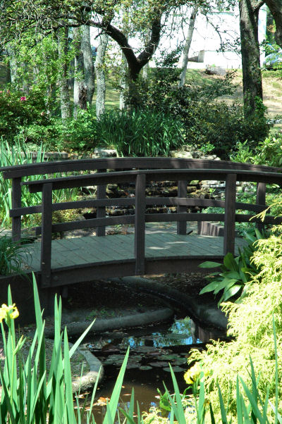 This walkway gives a zen feel to the garden setting.