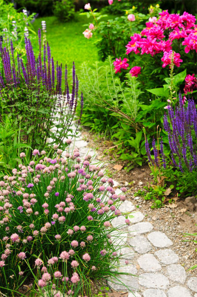 Cottage garden with stone path