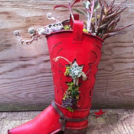 Cowboy boot planter and succulents.