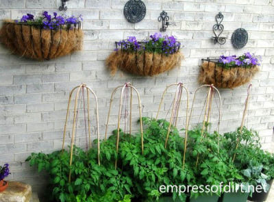 Wall planters with wrought iron accents make a great addition to a plain brick wall.