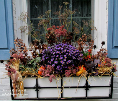 Fall window box welcomes the warm weather