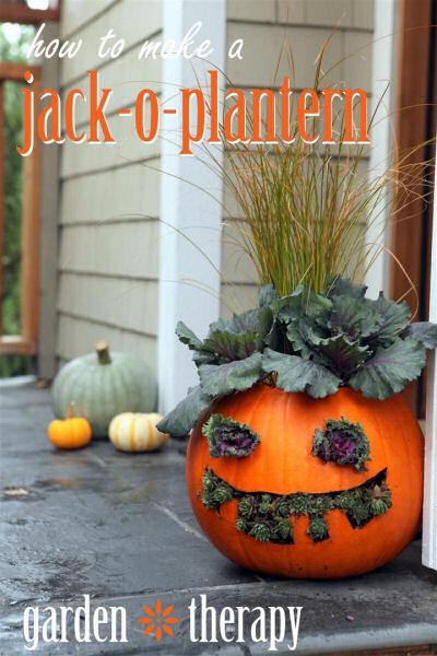 DIY Jack-O-Plantern