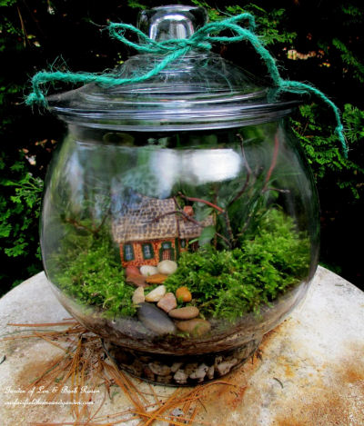 Indoor DIY Terrarium.