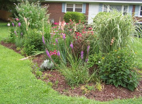 My front garden bed