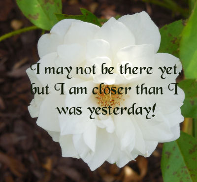 White rose and motivational saying about progress.