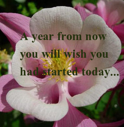 Get started today quote