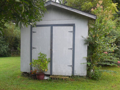 Garden shed with plants that still needs TLC.