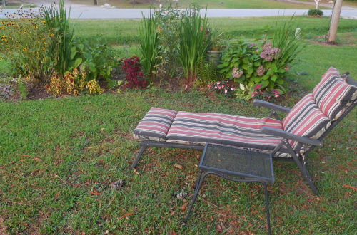 Lounge chair and garden bed.