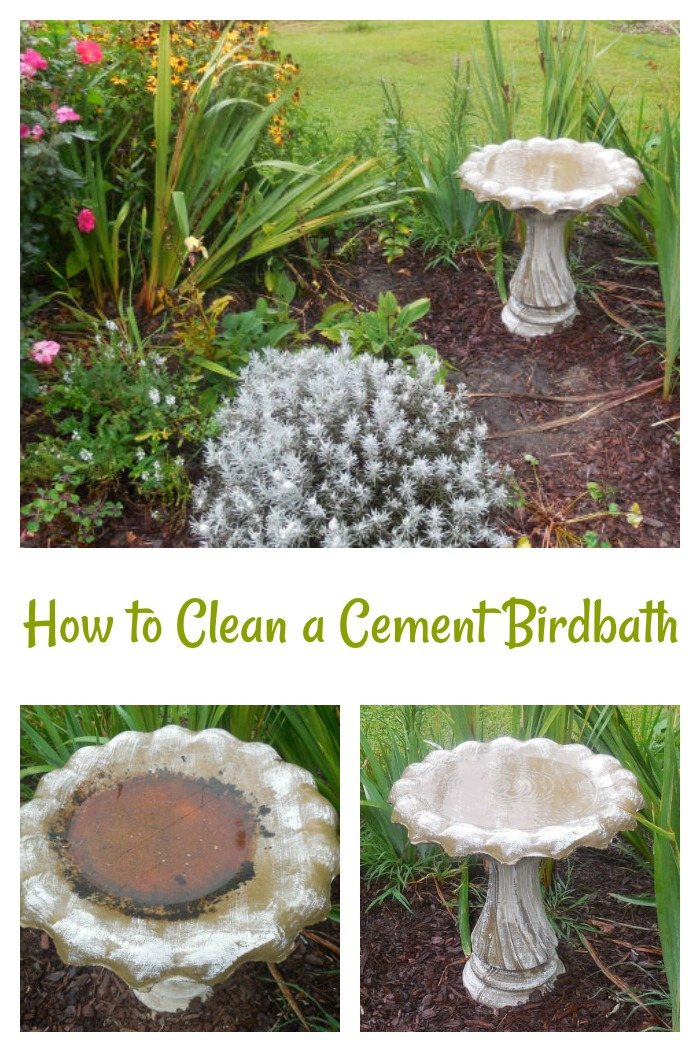 These tips to clean a cement bird bath will get yours clean quickly with little effort.