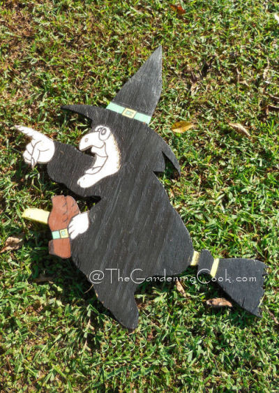 DIY Witch