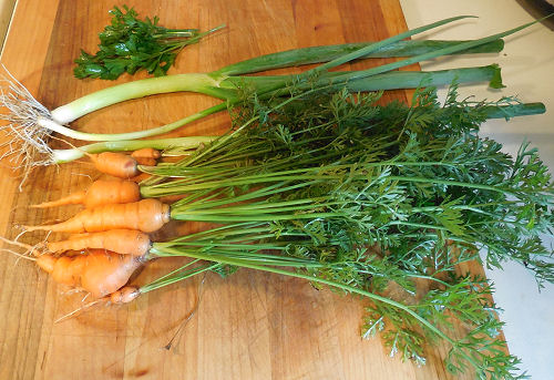 carrots spring onions parsley