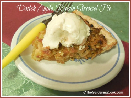 Dutch Apple Raisin Streusel Pie