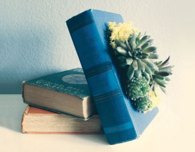 Vintage books used as succulent planters.