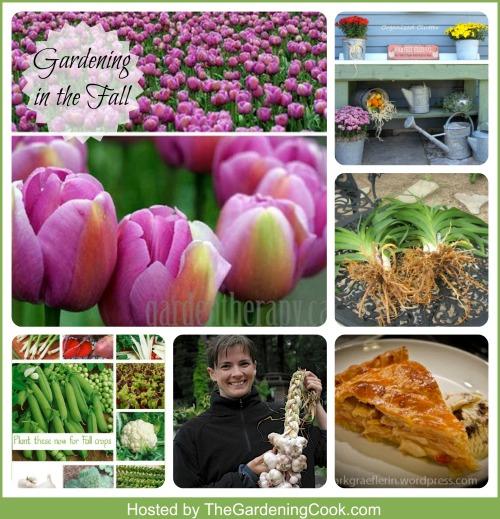 9 Gardeners share their fall gardening tips
